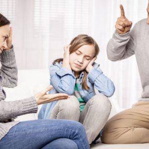 Comprendre la mécanique de mon enfant : Son stress, son insécurité, son opposition, son mode d'apprentissage etc. Développer un lien significatif avec lui. (Chez l'enfant de 1 ans à 12 ans)